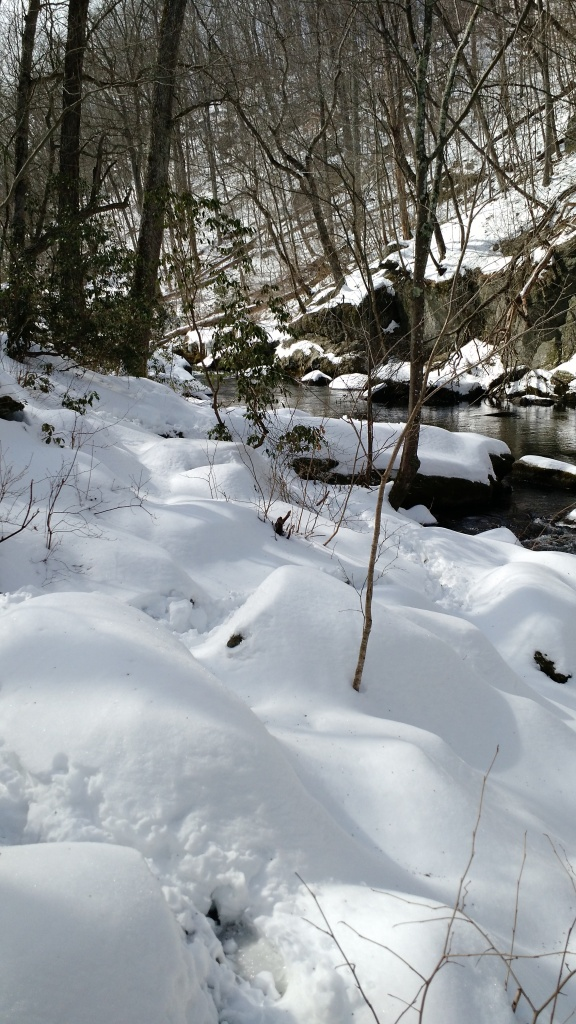 Gunpowder Falls trail covered in snow